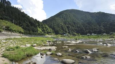 旭町の矢作川で育つうなぎをご提供します